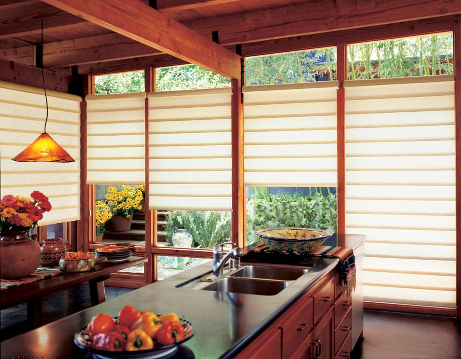 Aspen window shades