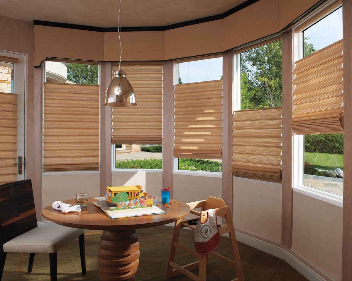 aspen colorado window shades